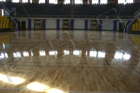 球場跑道,運動設施,高景,運動楓木地板