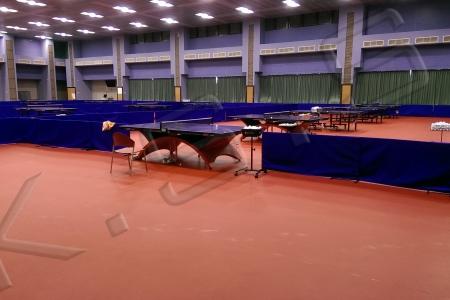 球場跑道,運動設施,高景,PVC桌球地墊