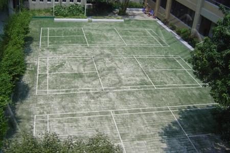 球場跑道,運動設施,高景,PP人工草